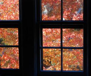 Lorsque l'hiver approche, il est important de vérifier son chauffage (Source : Flickr, - Peter Dutton)