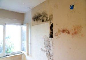Un défaut de ventilation peut occasionner des moisissures et de l'humidité.