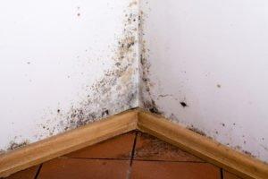 Une ventilation efficace est nécessaire pour une maison saine